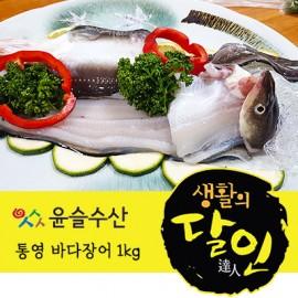 바다장어 1kg